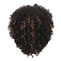 Zhhlaixing 高品質の Pretty Womens Short Small Curly Hair Heat Resistant Fiber Wig Hair WS500