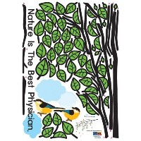 Easy Instant Home Decor Wall Sticker Decal - Nature Physician Birds Trees Leaves by Hyundae Sheet