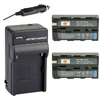 DSTE 2x NP-F550 バッテリー + DC01 トラベル and Car Charger Adapter for ソニー CCD-RV100 CCD-RV200 SC5 SC9 TR1...