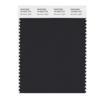 PANTONE SMART 19-4203X Color Swatch Card, Moonless Night by Pantone