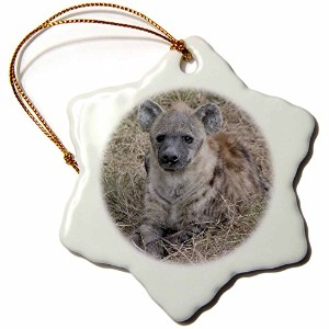 3drose Angelique Cajamサファリ動物–South African Hyenaフロントビュー–Ornaments 3 inch Snowflake Porcelain...