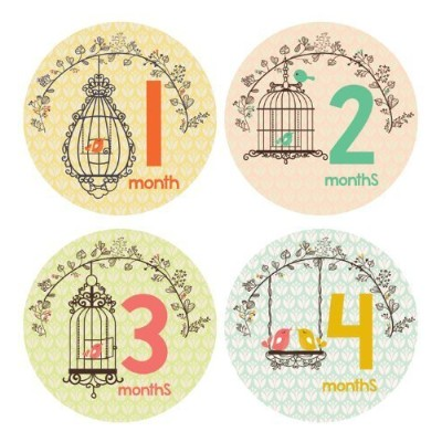 Lucy Darling Shop Monthly Baby Sticker - Baby Girl - Bird Cage Design - Months 1-12 by Lucy Darling...