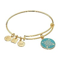 Alex and Ani Charity by Design Arrows友情の拡張可能なバングルブレスレット One Size