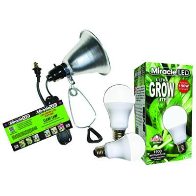 MiracleLED 604963 12 W Grows for Pennies Ultra Grow 1000ルーメンデイライトSpectrum Grow LED電球