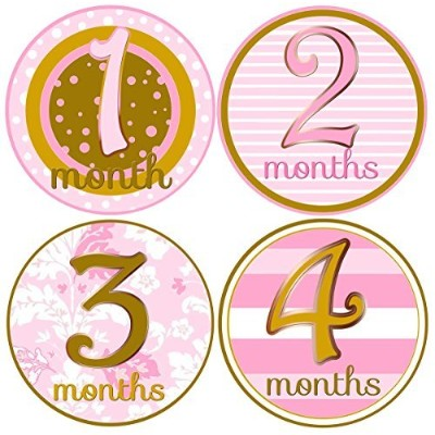 Mumsy Goose- Baby Girl Monthly Age Stickers- 1-12 Months Blush Pink Gold by Mumsy Goose