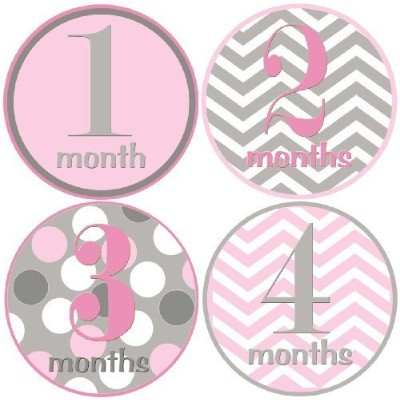 Baby Girl Monthly Milestone Stickers 1-12 Months By Mumsy Goose by Mumsy Goose