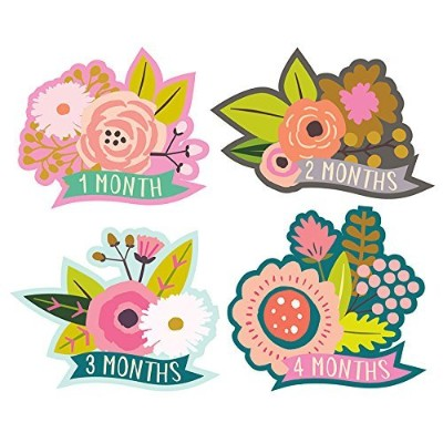 Lucy Darling Monthly Baby Stickers - Baby Girl - Little Blossom - Months 1-12 by Lucy Darling