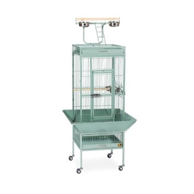 Prevue Pet Products 3151SAGE 18 in. x 18 in. x 57 in. Wrought Iron Select Cage - Sage
