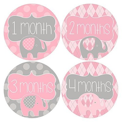 Gift Set of 12 Round Keepsake Photography Monthly Baby Stickers with Elephants in Pink and Gray...