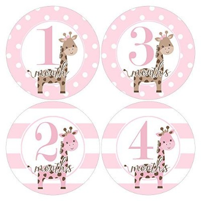 Gift Set of 12 Round Keepsake Photography Monthly Baby Stickers with Pink Giraffes MOSG178 by Heads...