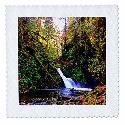 3drose Dylan Seibold – Photography – ゴールドStream Falls – キルト正方形 16x16 inch quilt square qs_262703_6