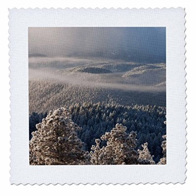 3drose Danita Delimont–フォレスト–アメリカ、コロラド州、Pike National Forest。Clouds Over Snowy Forest。–キルト正方形...
