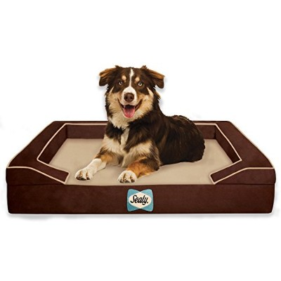 Sealy Dog Bed with Quad Layer Technology, Medium, Autumn Brown by Sealy Dog Bed