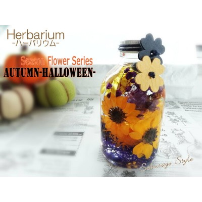 ★条件付き送料無料★ハーバリウムHerbarium Seasonal Flower series-AUTUMN Halloween-