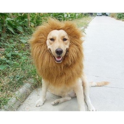 6MILES 1 Pcs Light Brown Adjustable Washable Comfortable Funny Lion Mane Wig with Ears for Dog and...