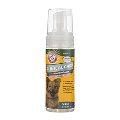 Arm & Hammerペットケア臨床歯科Foaming Mouthwash for Dogs | Soothes炎症Gums、5オンス、ミント味