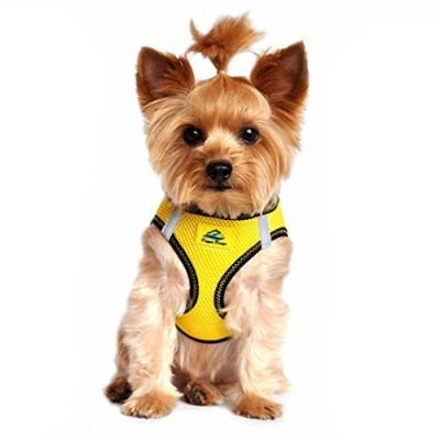 American River Dog Harness Top StitchCollection - Vibrant Yellow, XX Small by Doggie Design