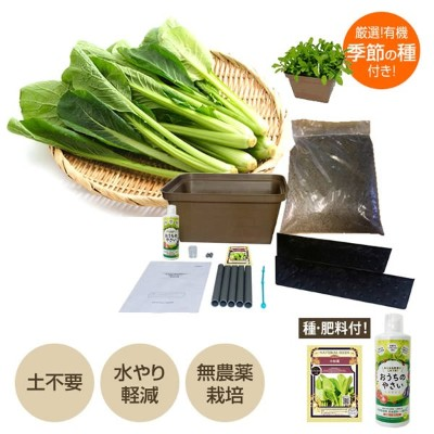 ≪SALE 10%OFF 12/11(火)1:59迄≫【最大1000円OFFクーポン 12/11(火)11:59迄】家庭菜園 プランター栽培セット(水耕栽培 養液栽培) 電源いらず 種 肥料 付 ...