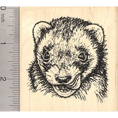 Ferret Rubber Stamp, Detailed and Realistic Face