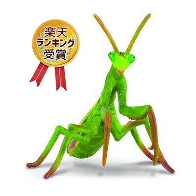 collecta (コレクタ)カマキリ 88351 昆虫 自然 標本 かまきり フィギュア おもちゃ セット 子供 男 グッズ 誕生日 誕生日プレゼント お中元 2021