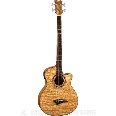 DEAN EXOTICA QUILT ASH BASS With APHEX (GN) [EQABA GN] 《アコースティックベース》【送料無料】(ご予約受付中)【ONLINE STORE】