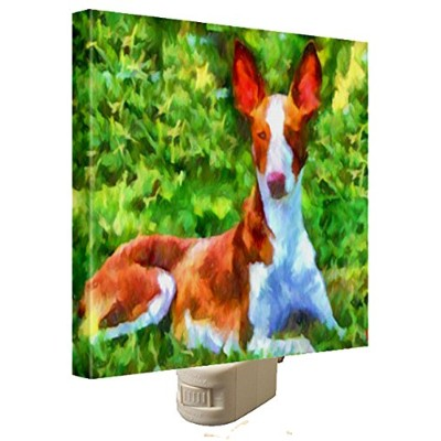 Ibizan Hound Night Light