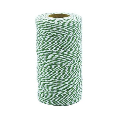 TWISTED STRING WHITE/GREEN ★ GS555-266J / 4997337092661 / ダルトン