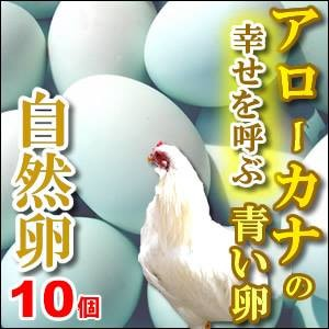 幸福をもたらすアローカナの青い卵10個入もちろん平飼い・自然卵!