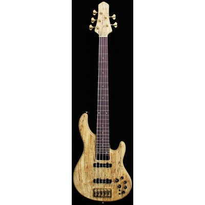 """STR GUITARS LS549 """"Spalted Tochi Top"""" 【現地選定品】 【PGC-BASS】"""