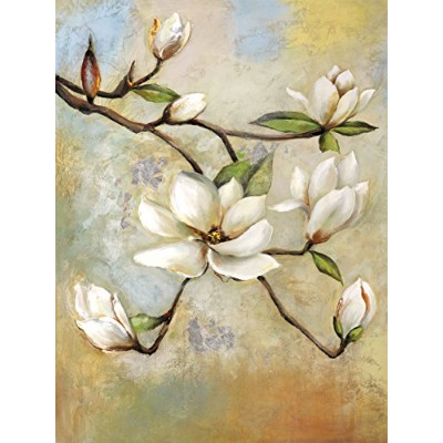 Portfolio Canvas Decor NCV4428 30 x 40 in. Spring Whisper I Framed And Stretched Large Canvas Wall...