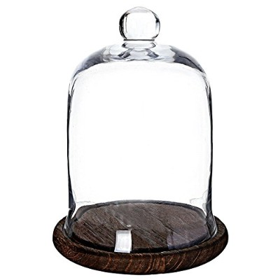 MyGift Clear Glass Jar, Cloche Dome Display Centrepiece with Brown Wood Base