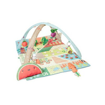 Skip Hop Farmstand Grow & Play Baby Play Mat an