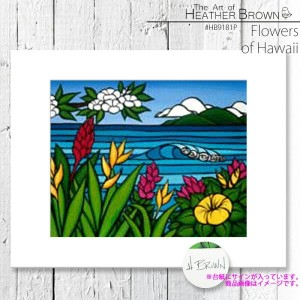 HEATHER BROWN Flowers of Hawaii HB9181P ヘザーブラウン アートプリント Mサイズ 絵画 ハワイ サーフ サーフィン ハワイアン 絵 風景画■CRNG ds-Y