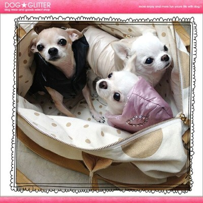 ルイスドッグ LouisDog Love Padding【RCP】【HLS_DU】