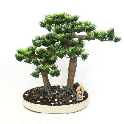 夫婦松(工芸盆栽)【Bonsai of imitation】【Bonsai of artificial】