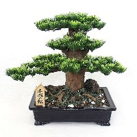 平成の松(工芸盆栽)【Bonsai of imitation】【Bonsai of artificial】