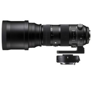 SIGMA/シグマ 150-600mm F5-6.3 DG OS HSM Sports テレコンバーターキット ニコン用