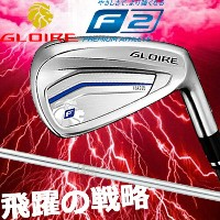 Taylor made テーラーメイド GLOIRE F2 グローレ F2 5本アイアンセット #6~PW N.S.PRO930GH スチールシャフト