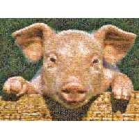 【[バッファローゲーム]Buffalo Games Photomosaic Pig 1000pc Jigsaw Puzzle 534 [並行輸入品]】 b000ncaip2