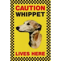 CAUTION WHIPPET LIVES HERE サインボート:ウィペット 写真 画像 英語 看板 Made in U.K [並行輸入品]