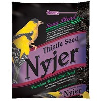 F.M. Brown's Song Blend Nyjer Thistle Seed for Pets, 10-Pound by F.M. Brown's