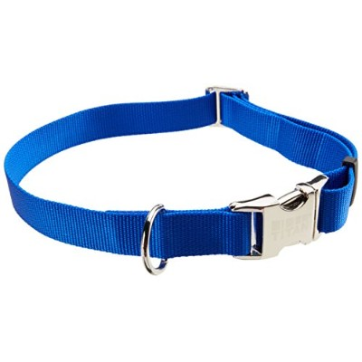 Titan Adjustable Collar for Large Dogs - 1 Blue by Coastal Pet