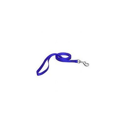 Aspen Pet Products Std Nyl Lead, Blue, 4' x 3/8 by Aspen Pet