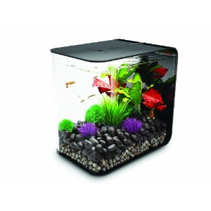 biOrb FLOW 15 Aquarium with LED Light - 4 Gallon, Black by biOrb