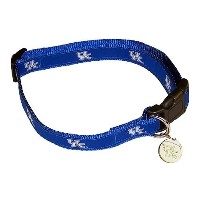 Sporty K9 Collegiate Kentucky Wildcats Dog Collar, Large by Sporty K9