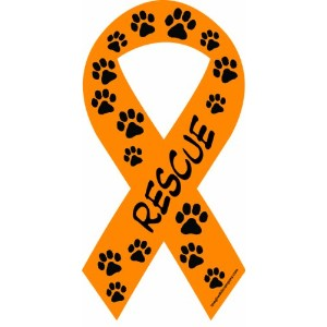 Imagine This 8-Inch by 4-Inch Car Magnet Social Issues Ribbon, Rescue, Orange by Imagine This