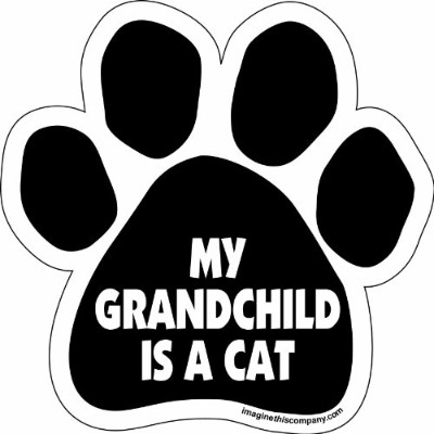 Imagine This Paw Car Magnet, My Grandchild is a Cat, 5-1/2-Inch by 5-1/2-Inch by Imagine This