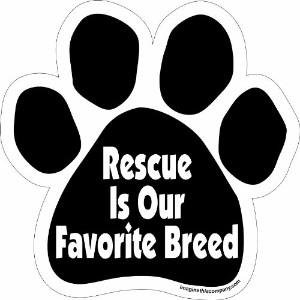 Imagine This Paw Car Magnet, Rescue is our Favorite Breed, 5-1/2-Inch by 5-1/2-Inch by Imagine This