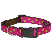 Sassy Dog Wear 18-28-Inch Fuchsia/Lime Dot Dog Collar, Large by Sassy Dog Wear