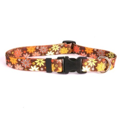 Autumn Flowers Dog Collar - Size Teacup 4 to 9 Long - Made In The USA by Yellow Dog Design